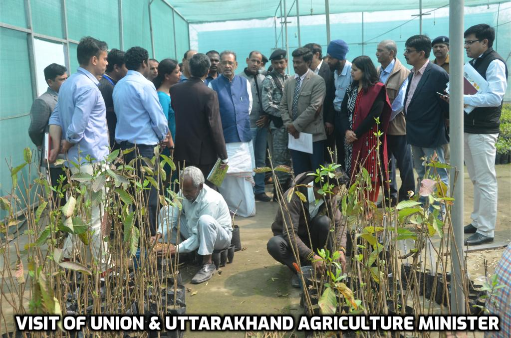 Visit of Union and Uttarakhand Agriculture Minister at Horticulture Research Center 2